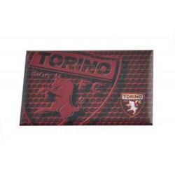 Magnete Torino FC